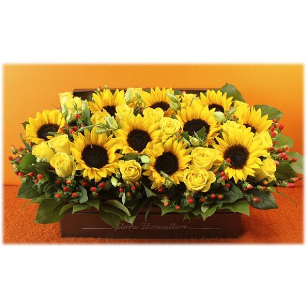 A97   鮮花花盒 - 向日葵花盒花