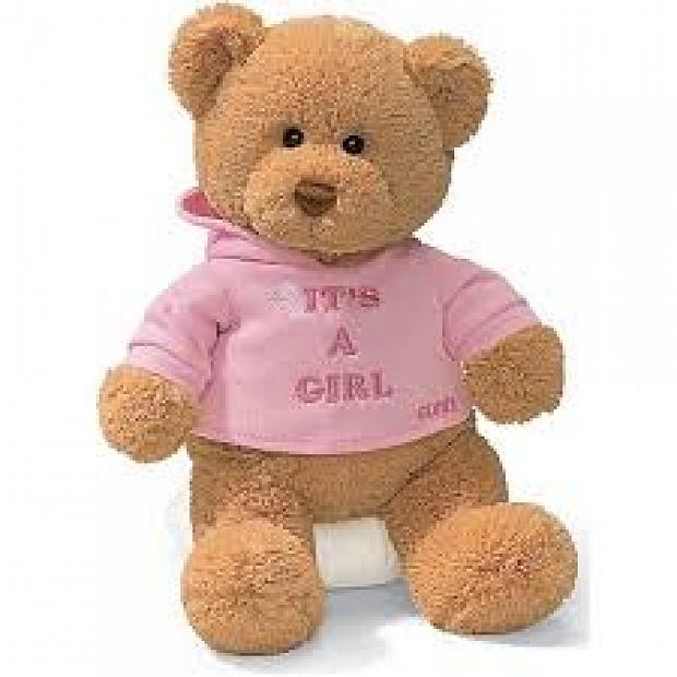 Gund It's a Girl 恭賀BB女誕生泰迪Bear Bear熊仔 15419