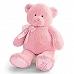 正版美國babyGund超大號BearBear 嬰兒禮物籃