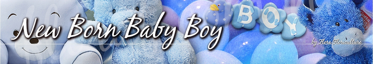 嬰兒禮籃 - bb仔禮物